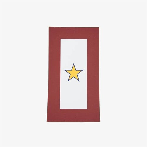 661-Gold-Star-Flag