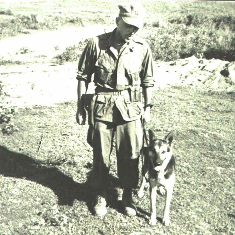 Us War Dogs Memorial New Jersey Vietnam Veterans