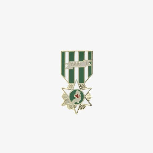 120-Vietnam-Campaign-Pin