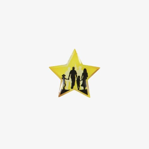 170-Gold-Star-Family-Pin
